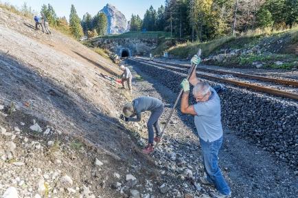 An einem steilen Hang entlang dem neuen Stoosbahnen-Trassee wurden über 600 Weidenstecklinge gesetzt.